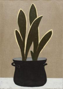 sansewieria - Bettina Bereś - Maranta (roślina) w czarnym garnku, surowe płótno