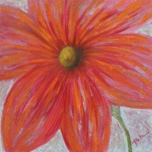 różowy - Paulina Leszczyńska - różowy kwiat